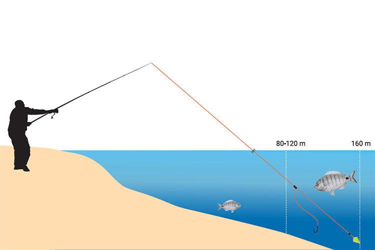 Comment choisir sa canne pour le surfcasting