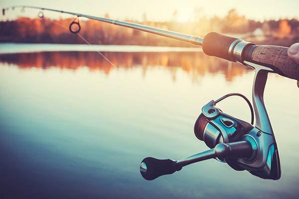 Canne de pêche à la truite | Pacific Pêche