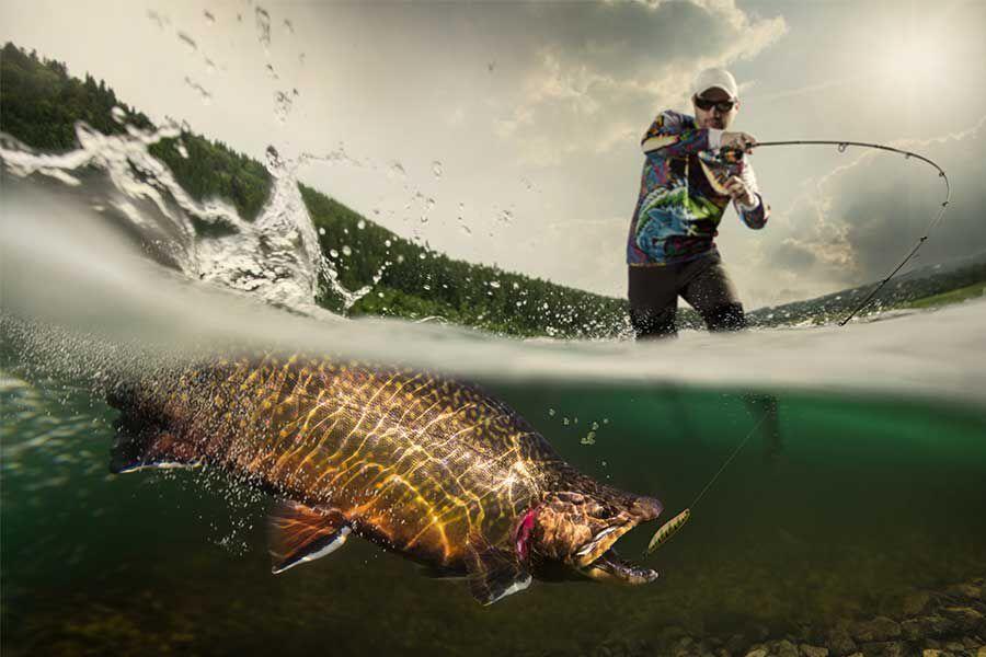 Leurres à truite | Pacific Pêche