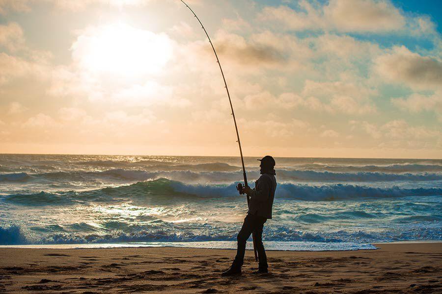 L'offre surfcasting pour bien démarrer la saison - Pacific pêche