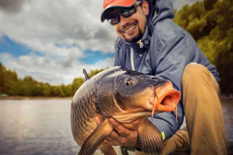 Les indispensables pour débuter la pêche de la carpe