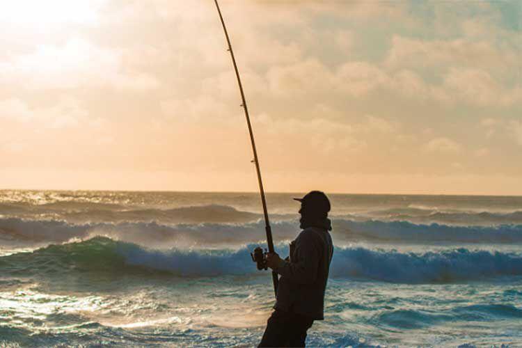 Comment débuter en pêche en mer