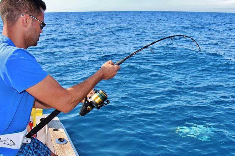 La pêche du thon rouge