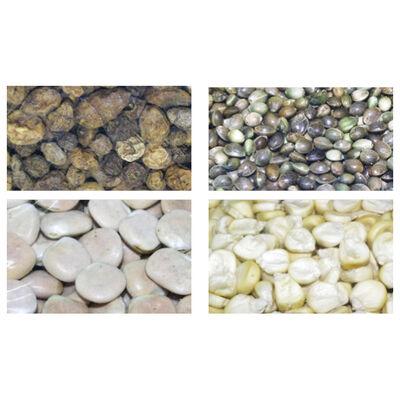 Graines sèches carpe active baits melange de graines - Sèches | Pacific Pêche