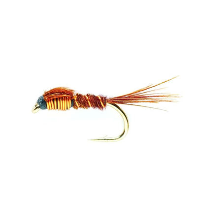 Nymphe silverstone pheasant tail (x3) - Nymphes | Pacific Pêche