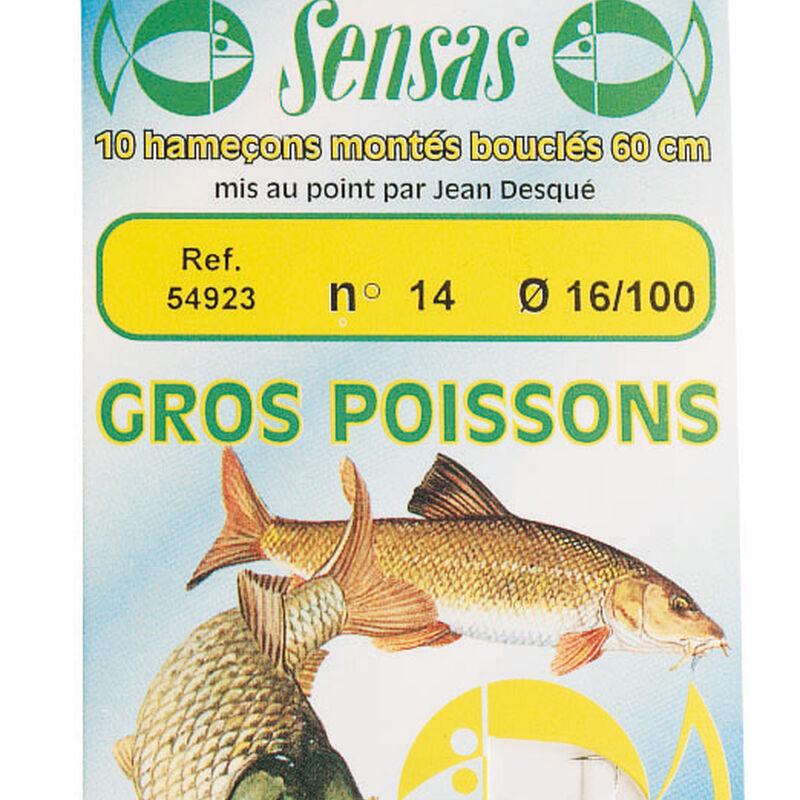 Hameçons montés coup sensas gros poissons (x10) - Hameçons Montés | Pacific Pêche