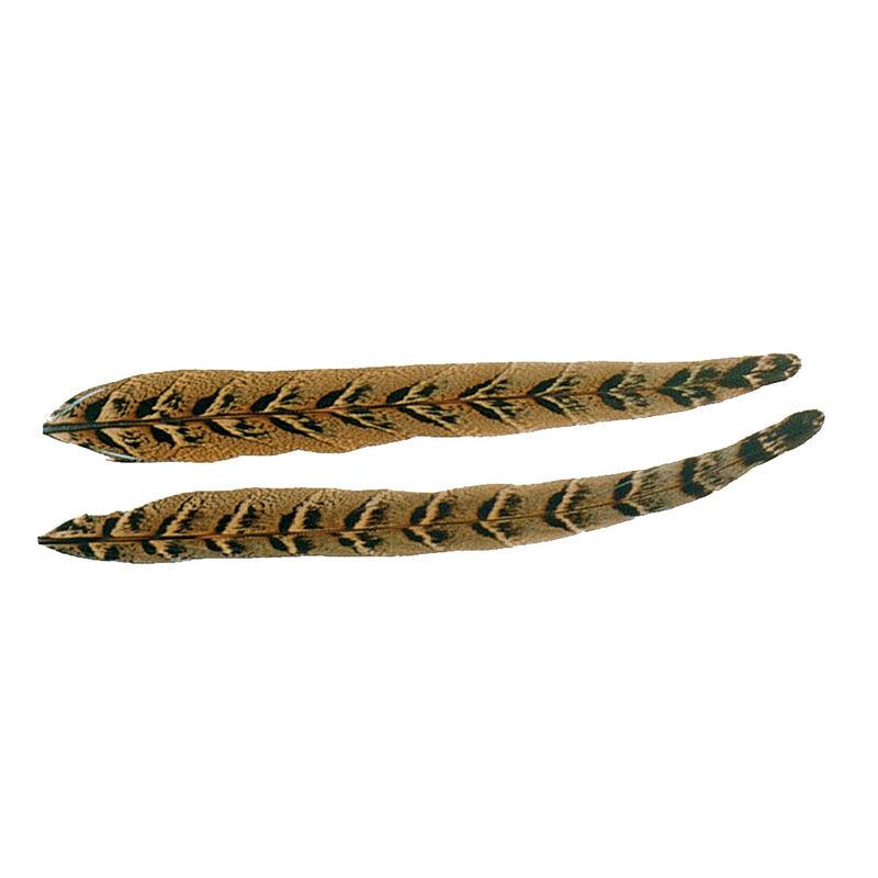 Fly tying plumes jmc queue de faisane - Plumes   Pacific Pêche