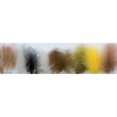 Fly tying plumes cdc (3 gr) - Plumes | Pacific Pêche