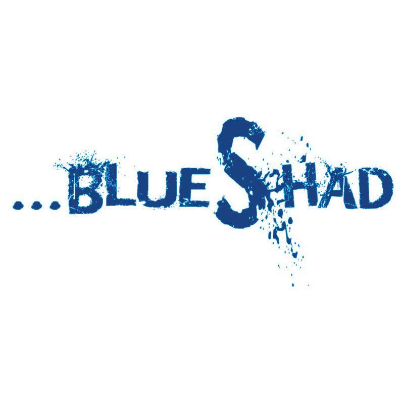 Leurre souple flashmer blue shad 15cm 90g - Leurres souples | Pacific Pêche