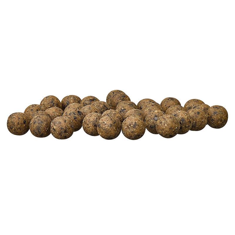 Bouillettes carpe starbaits feedz hemp 4kg - Denses | Pacific Pêche