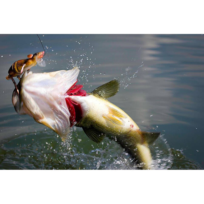 Leurre dur swimbait carnassier savage gear 3d rad f 20cm 32g - Swim Baits   Pacific Pêche