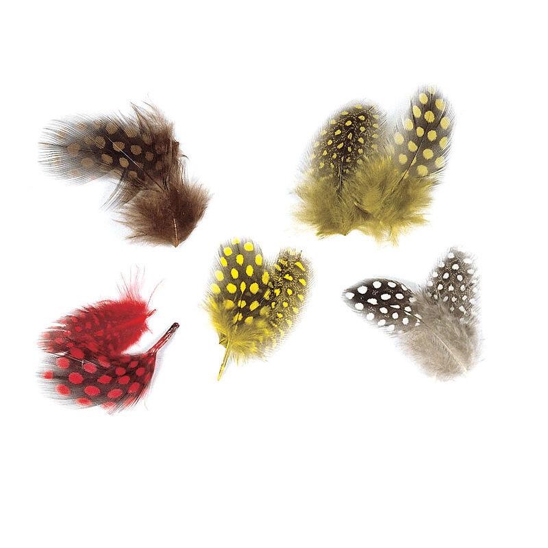 Fly tying plumes de pintade jmc - Plumes | Pacific Pêche