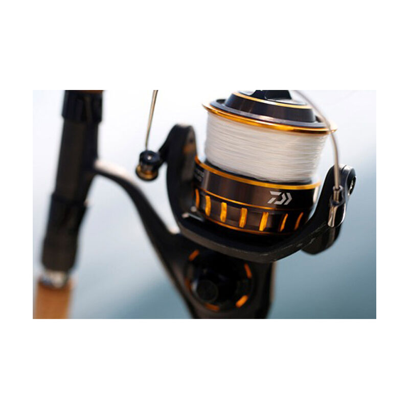 Moulinet daiwa bg black gold 5000 - Moulinets tambour Fixe | Pacific Pêche