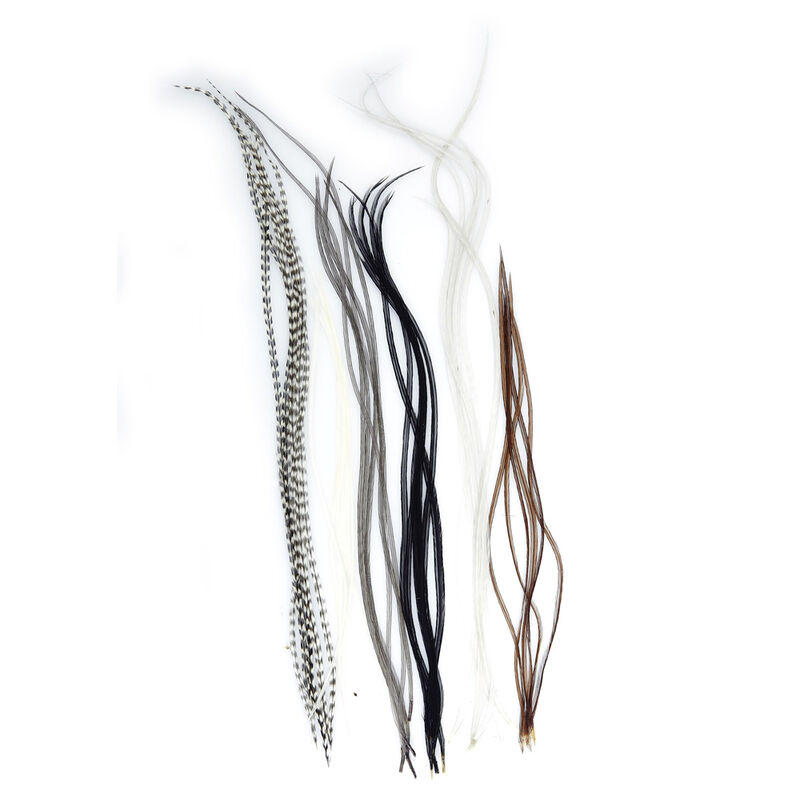 Fly tying plumes jmc lancettes top grade (6 plumes) - Plumes | Pacific Pêche