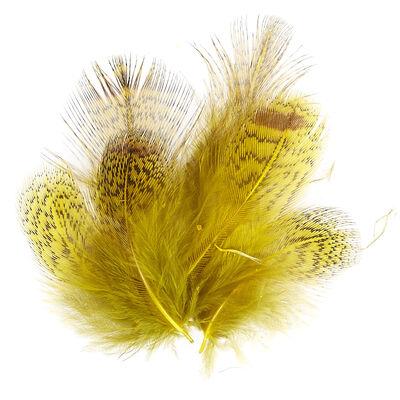 Plumes montage mouche jmc perdrix grise (jaune) - Plumes | Pacific Pêche