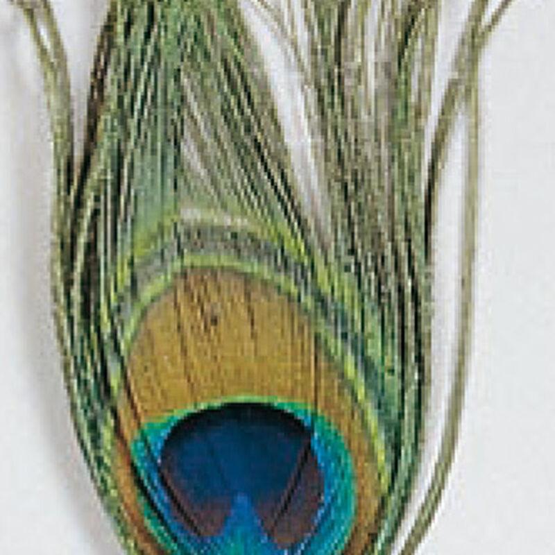 Fly tying plume jmc oeil de paon - Plumes | Pacific Pêche