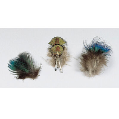 Fly tying plumes de paon naturelles bleues jmc - Plumes | Pacific Pêche