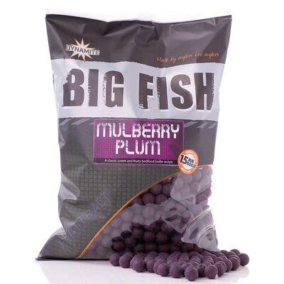 Bouillettes dynamite baits mulberry plum big fish 1.8kg - Denses | Pacific Pêche