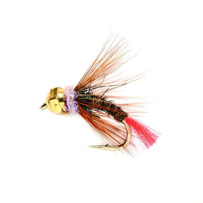 Nymphe tungstene silverstone pheasant tag rouge tail h12 (x3) - Nymphes | Pacific Pêche