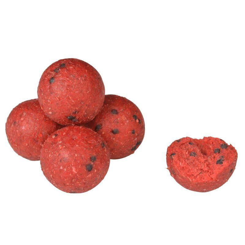 Bouillettes carpe active baits custom boilies secret strawberry 20mm - Denses | Pacific Pêche