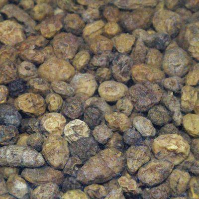 Graines sèches carpe active baits tiger nuts micro. - Sèches | Pacific Pêche