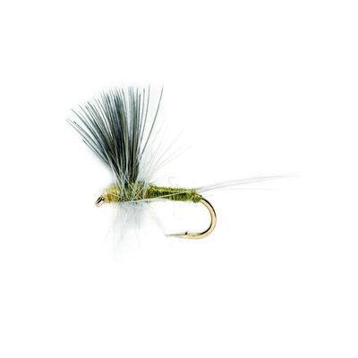 Mouche sèche silverstone bwo aile cdc h18 (x3) - Sèches | Pacific Pêche