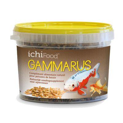 Aliment ichifood gammarus 1l - Alimentation et soin du poisson | Pacific Pêche