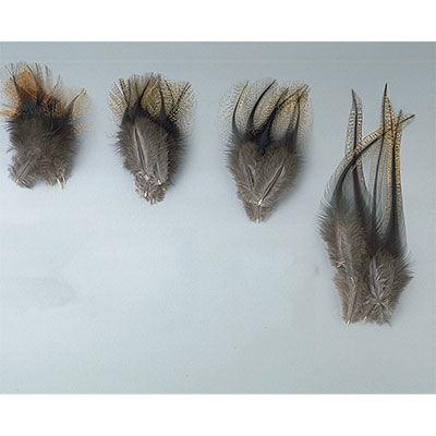 Fly tying plumes pelle d'épaule de coq pardo grade 1 jmc - Plumes | Pacific Pêche