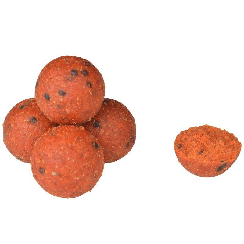 Bouillettes carpe active baits custom boilies tutti frutti 20mm - Denses | Pacific Pêche