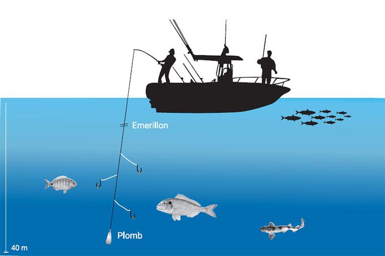 La pêche en bateau Conseils I Pacific Pêche