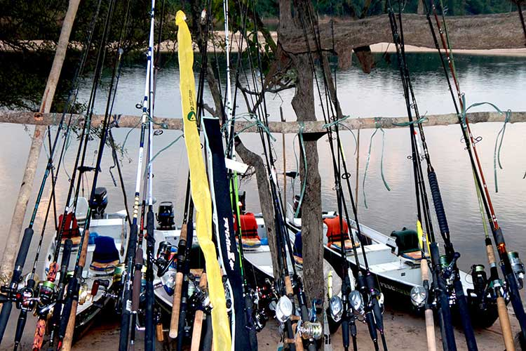 Spinning ou casting, nos conseils I Pacific Pêche
