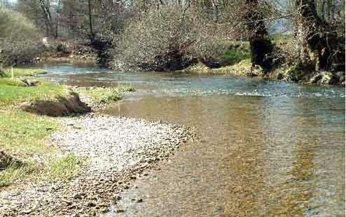 Rivière Le Suran