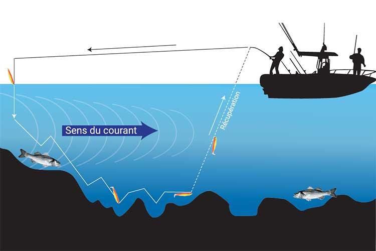 Conseils pour la pêche au lancer I Pacific Pêche