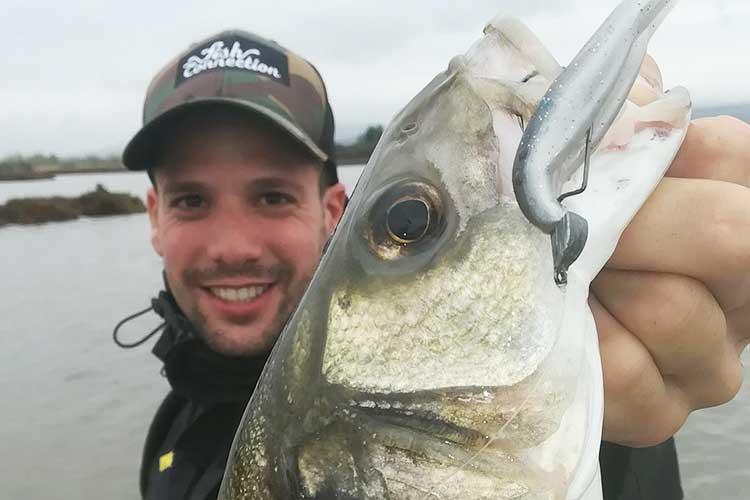 Conseils pour la pêche du bar du bord I Pacific Pêche