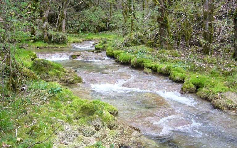 Rivière Albarine