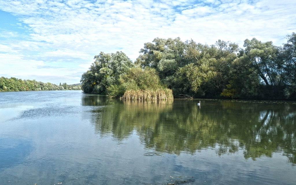 La Moselle sauvage Pont à Mousson
