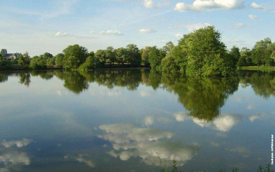 Les étangs de Toul